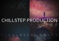 Freak Music - Chillstep Production 4 WAV MIDI PRESETS