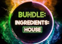 Catalyst Samples Bundle: Ingredients House WAV MIDI