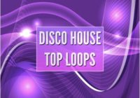 Technique Sounds Disco House Top Loops WAV AIFF