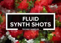 FLUID SYNTH SHOTS - Techno One Shots WAV