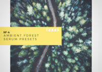 GOGOi Ambient Forest [Serum Presets]