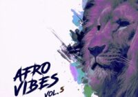 King Loops Afro Vibes Vol.5 Sample Pack