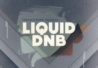 FL166 Liquid DnB Sample Pack WAV