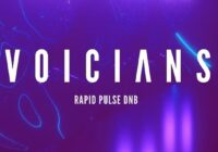 Voicians - Rapid Pulse DnB WAV MIDI