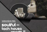 Bingoshakerz Soulful & Tech House Vocals 4 WAV