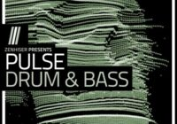 Pulse - Drum & Bass Sample Pack (WAV MIDI)