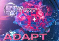 Synthetic & Bart How Adapt Vol. 2 Sound Kit [Serum + One-Shot Kit]