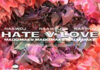 Madd Maks + Naawoj - Hate v. LUV [LoopKit] WAV