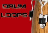 Bunker 8 Digital Labs Latin Drum Loops WAV