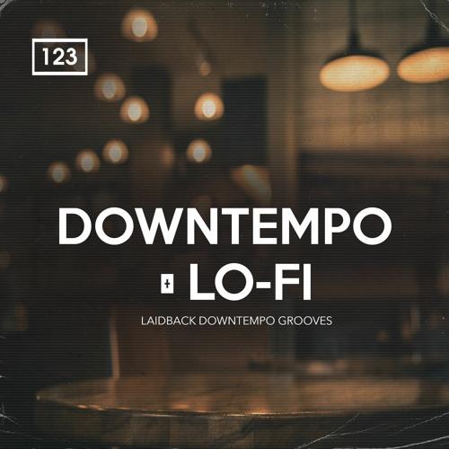 Bingoshakerz Downtempo & Lo-Fi WAV MIDI