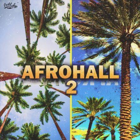 Cartel Loops Afrohall 2 WAV MIDI