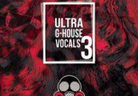 Vandalism Ultra G-House Vocals 3 WAV
